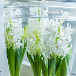 Kwiaty do eventów w Warszawie