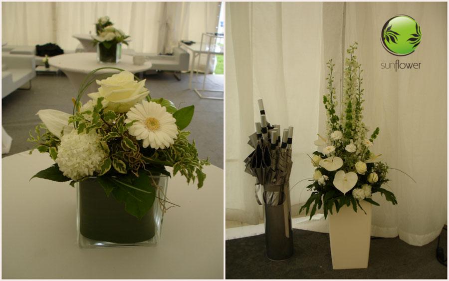 Białe kwiaty w różnych wazonach