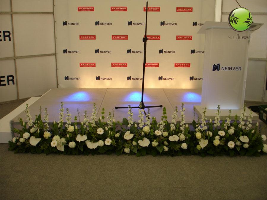 Kwiaty pod sceną