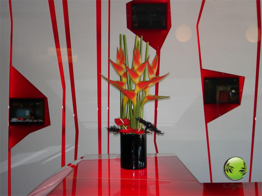 Wysoki stroik czerwono-zielony