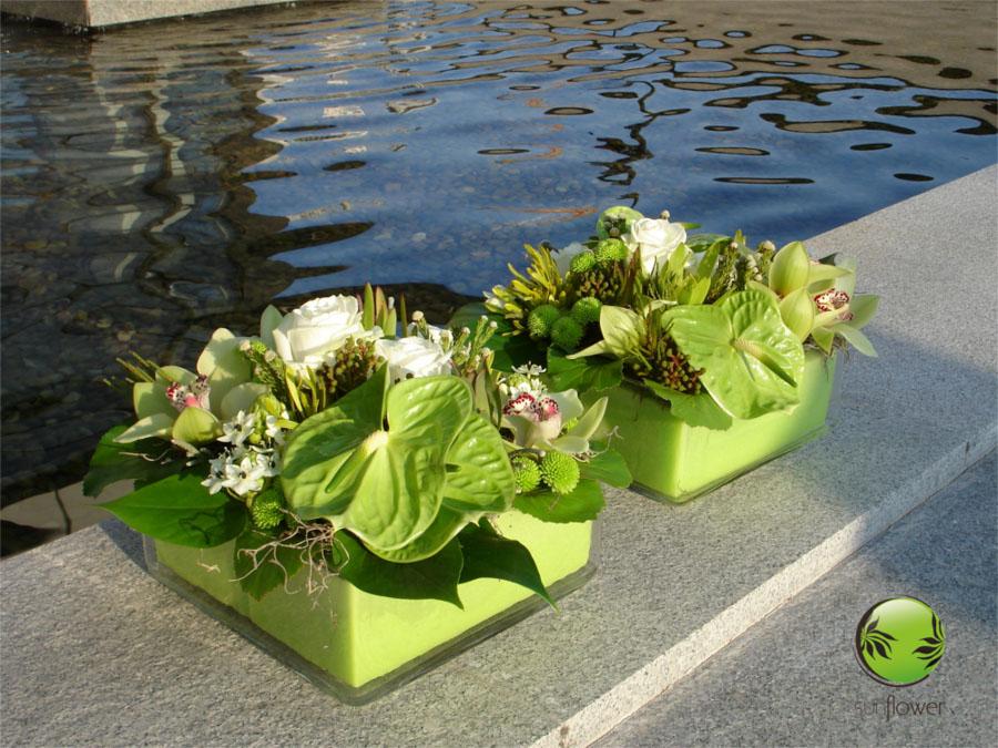 Zielone stroiki nad wodą