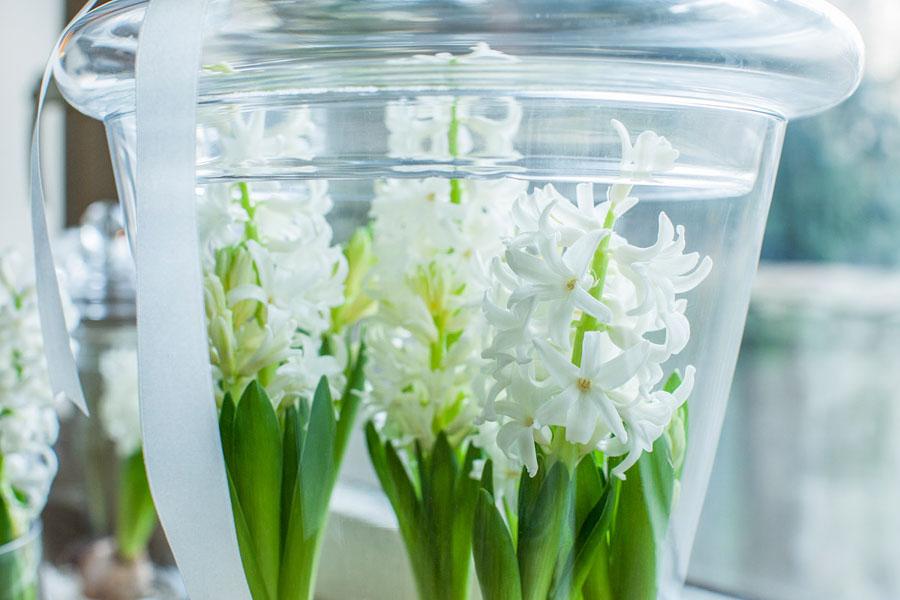 Kwiaty w szkle