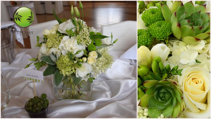Białe i zielone rośliny