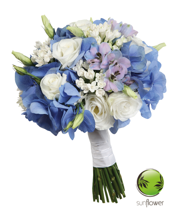 1. niebieski