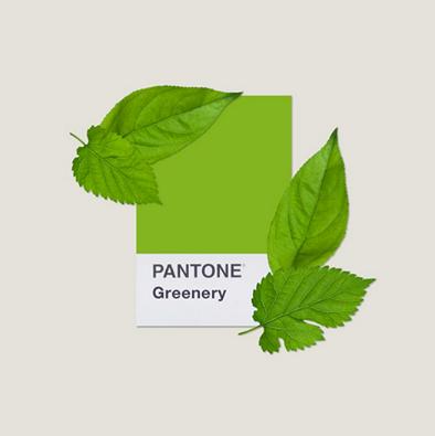 Próbnik koloru Pantone greenery