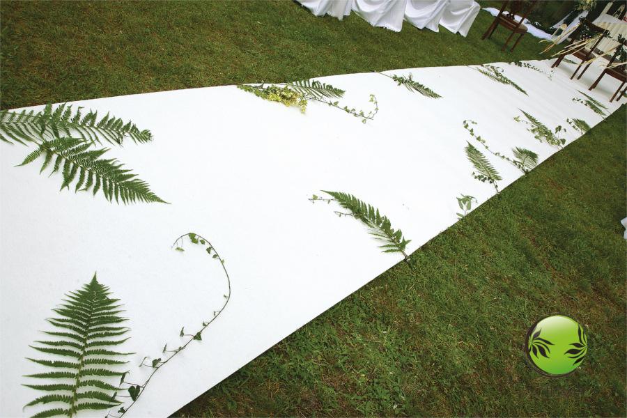Paprocie na białym dywanie
