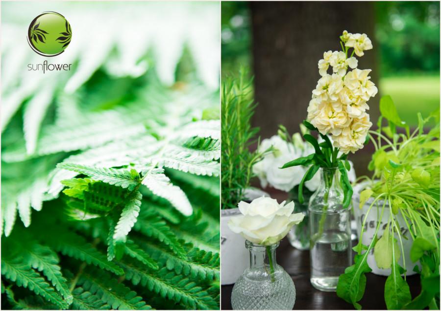 Paprocie i kwiaty w butelkach