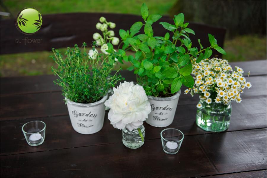 Kwiaty w doniczkach na wesele